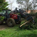Évacuation des branches après l'élagage de l'arbre