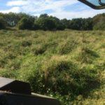Terrain nettoyé au micro tracteur et broyeur à herbe