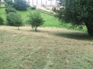 Terrain débroussaillé et nettoyé 9