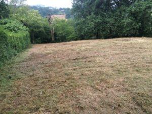 Terrain débroussaillé et nettoyé 2