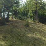 Terrain débroussaillé et nettoyé 4