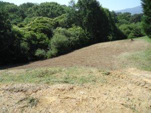 Terrain débroussaillé et nettoyé 5