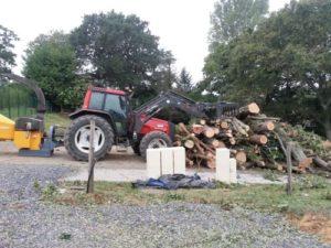 Évacuation de l'arbre démonté