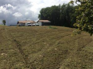 Débroussaillage de terrains